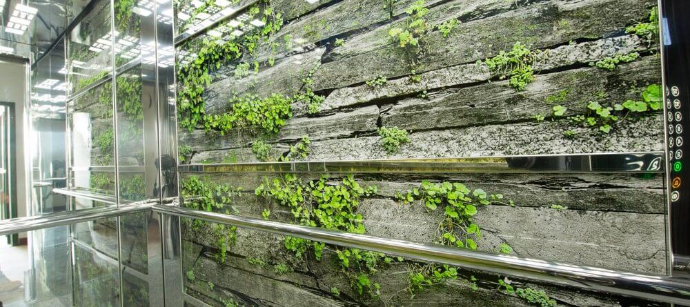 stena kabiny_priroda